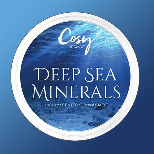 Cosy Aroma Soy Wax Melt Pod Deep Sea Minerals