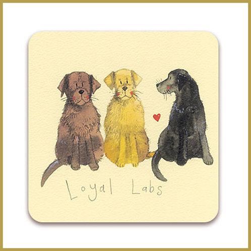 Alex Clark Coaster C10 Loyal Labs