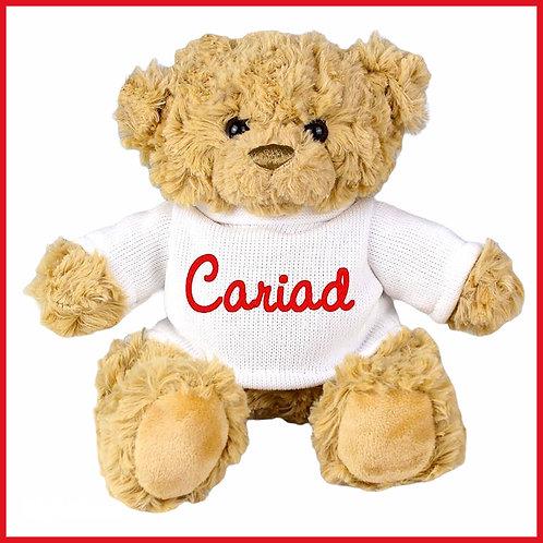 Welsh Teddy Bear Cariad