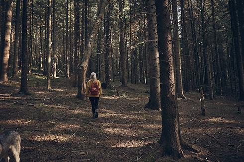 Vrouw die in bos loopt