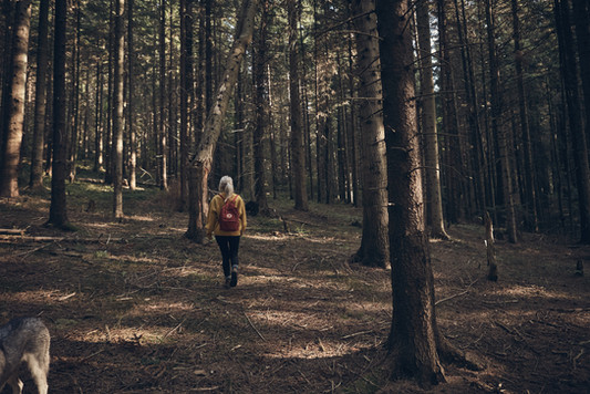 Woman Walking in Forest