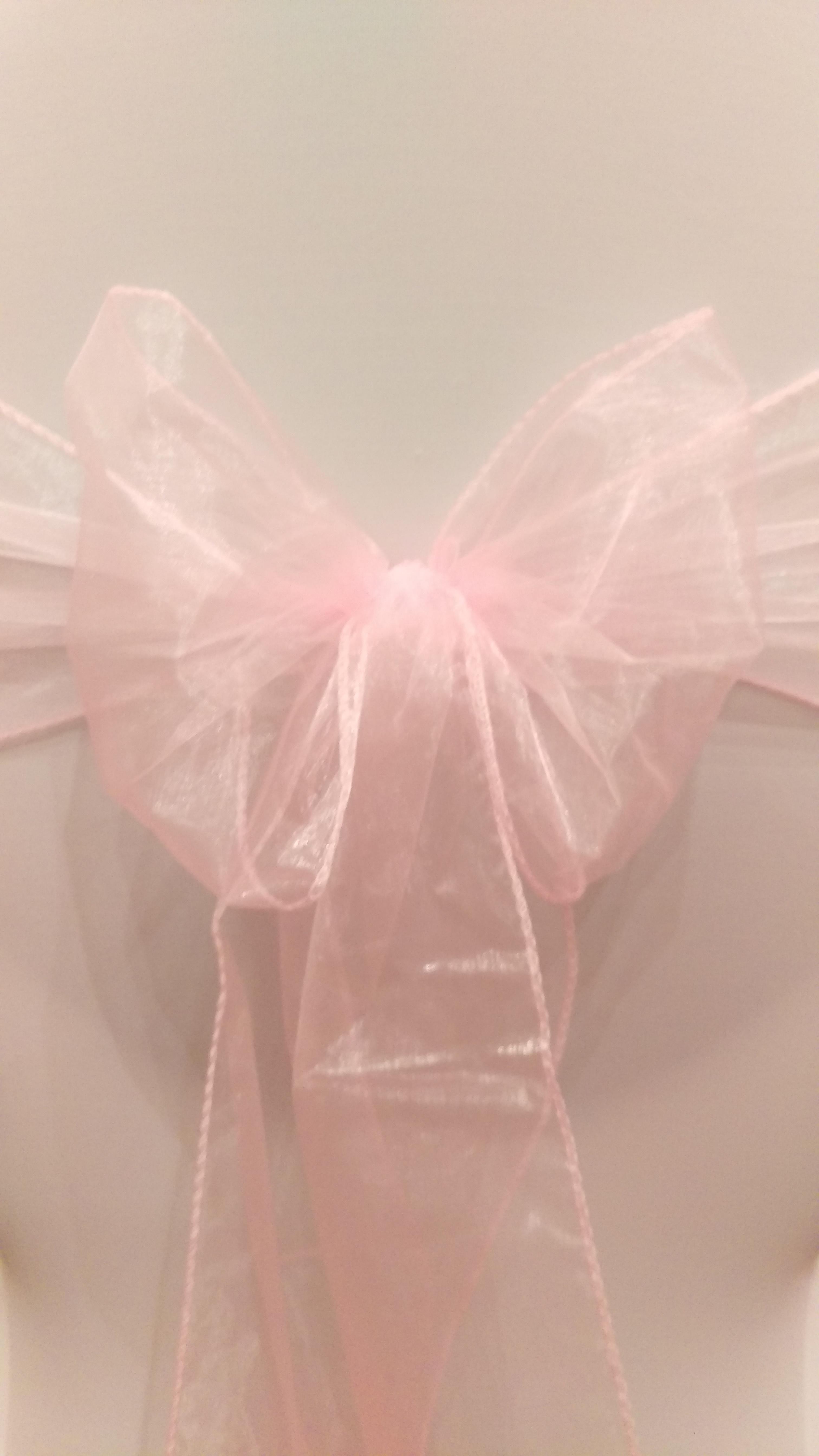Baby Pink Organza Sash #12