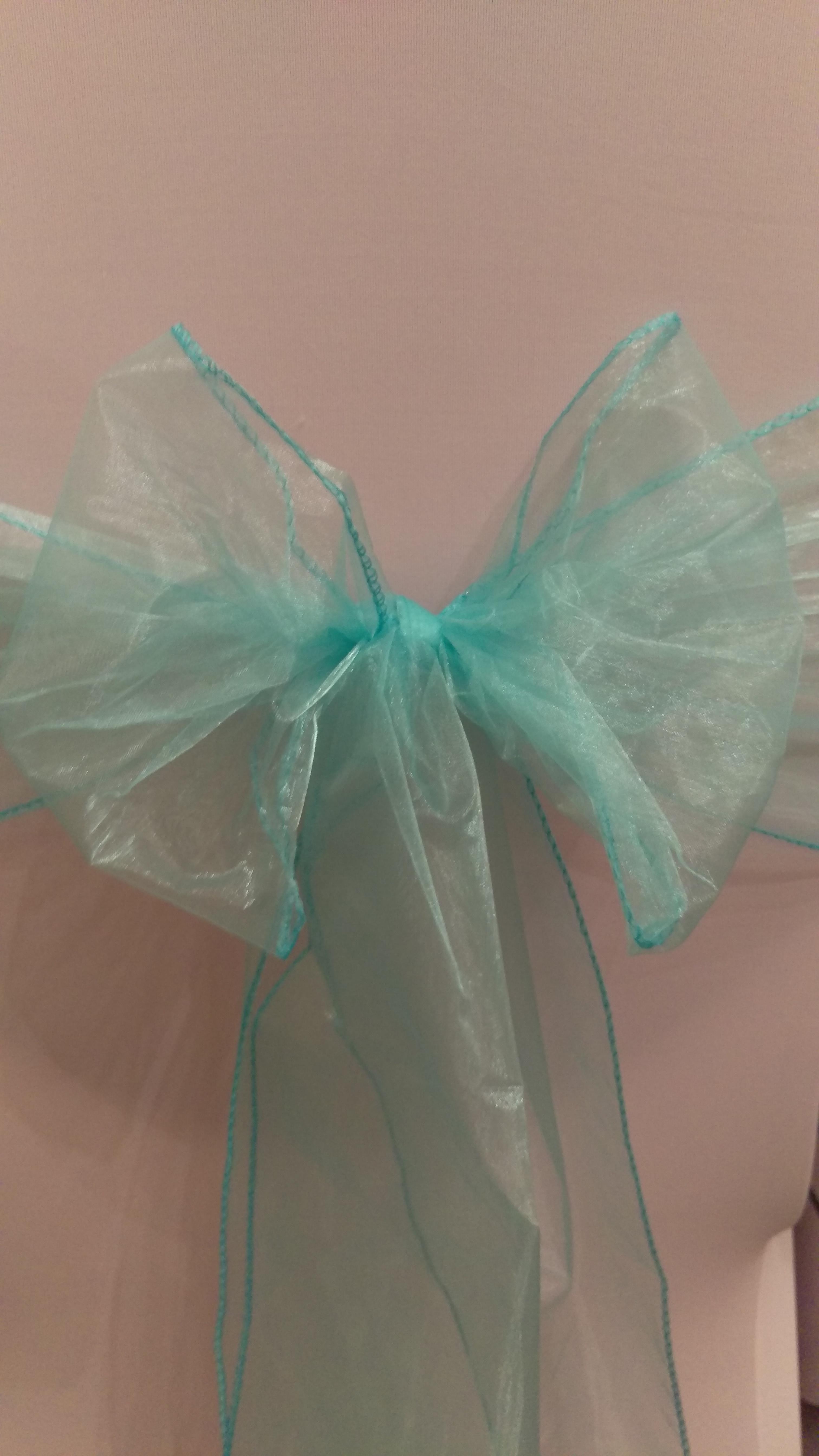 Turquoise Organza Sash #20