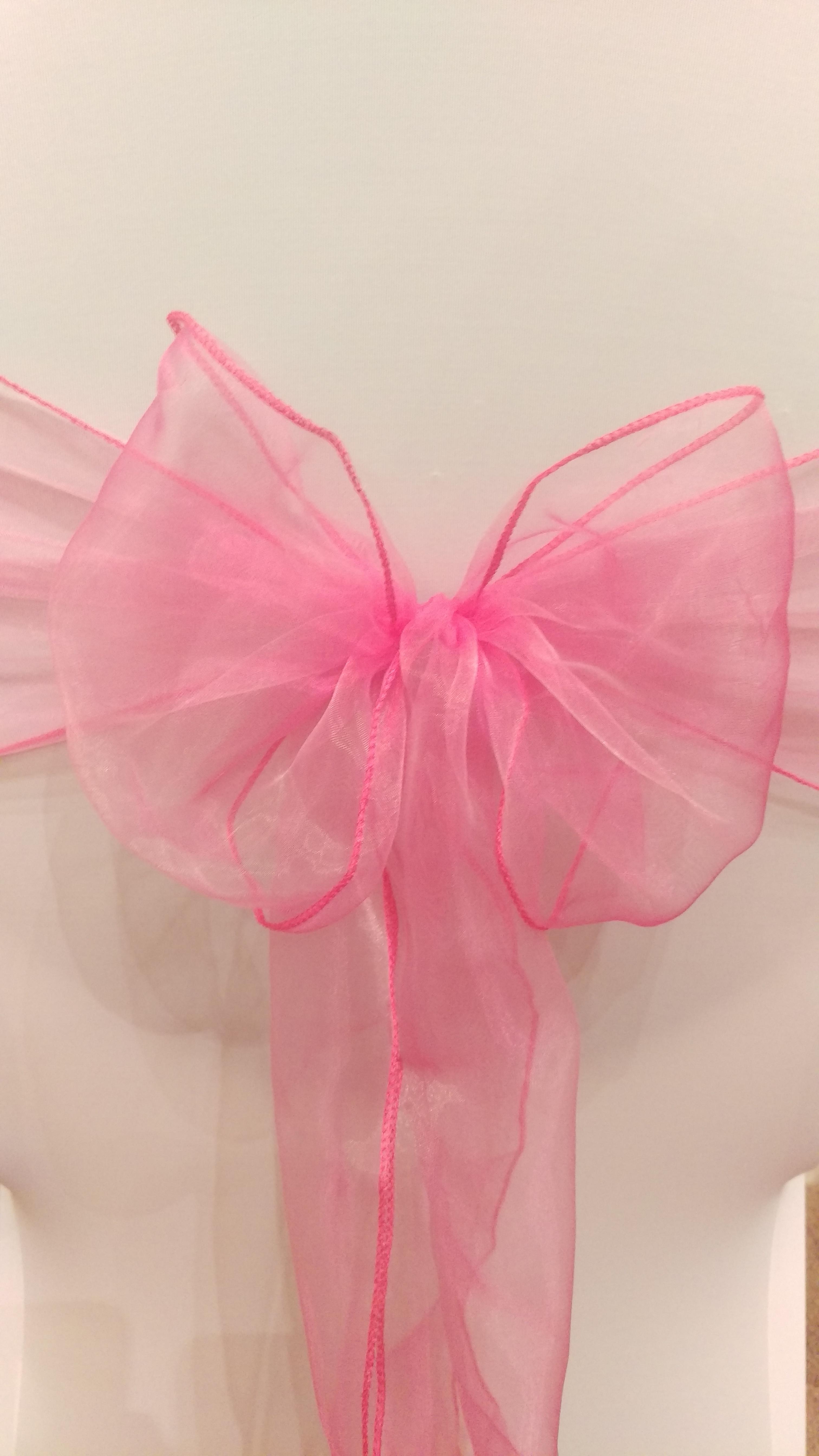 Pink Organza Sash #31
