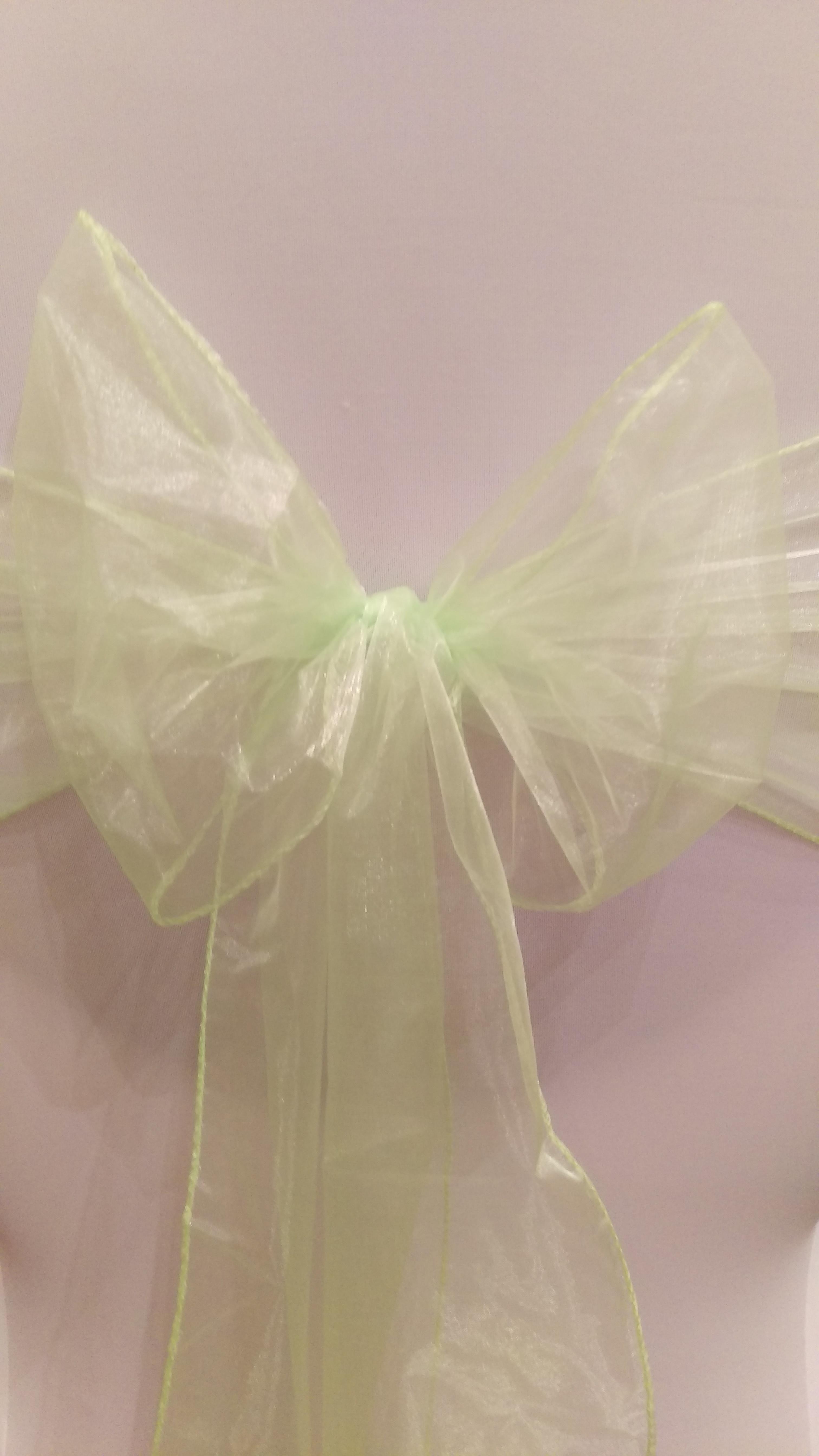 Lime/Apple Green Organza Sash #23