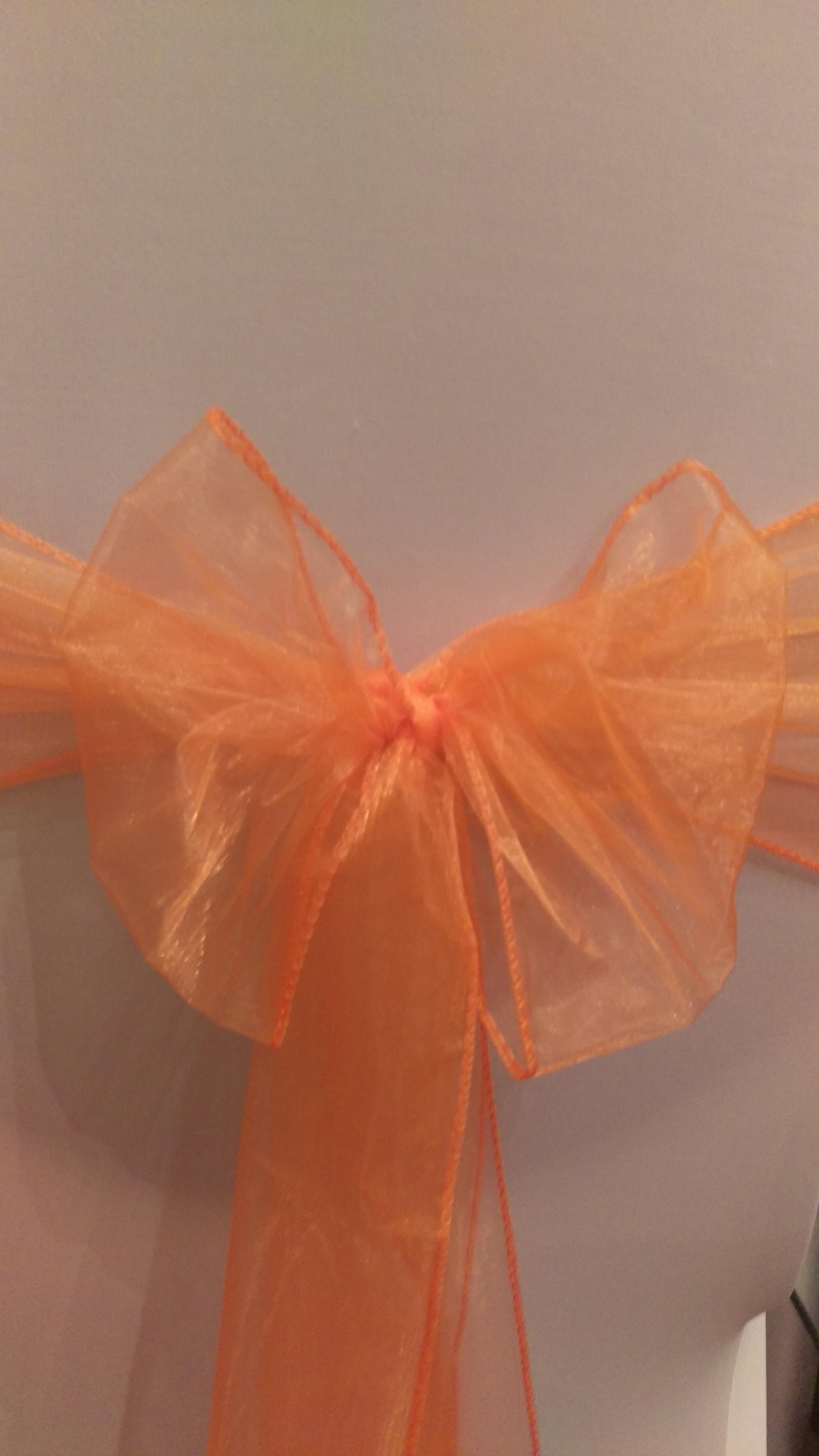 Orange Organza Sash #21