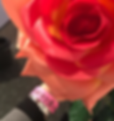 Screenshot 2019-03-10 at 11.58.29.png