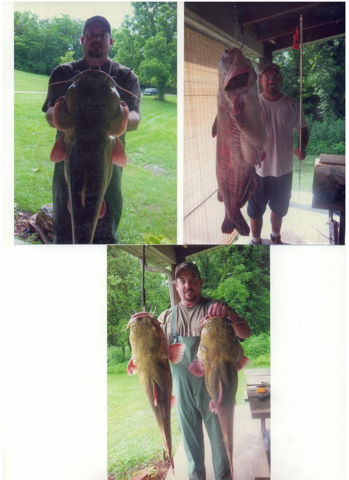 Donnie with some giant catfish!!