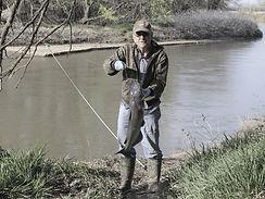 bank, line, fishing, pole, catfish