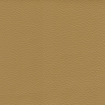 RS Leather 24 - Citrine