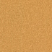 RS Leather 25 - Mustard Yellow
