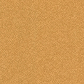 RS-25 Mustard Yellow Leather