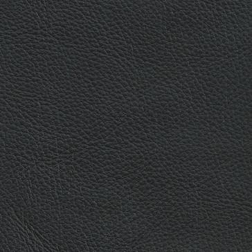 R Leather 02 - Black