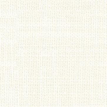 Nemo 01 - Canvas