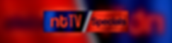 Specials Banner resized (1).png