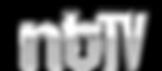 ntTV 3d logo.png