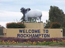rocky bull-1.jpg