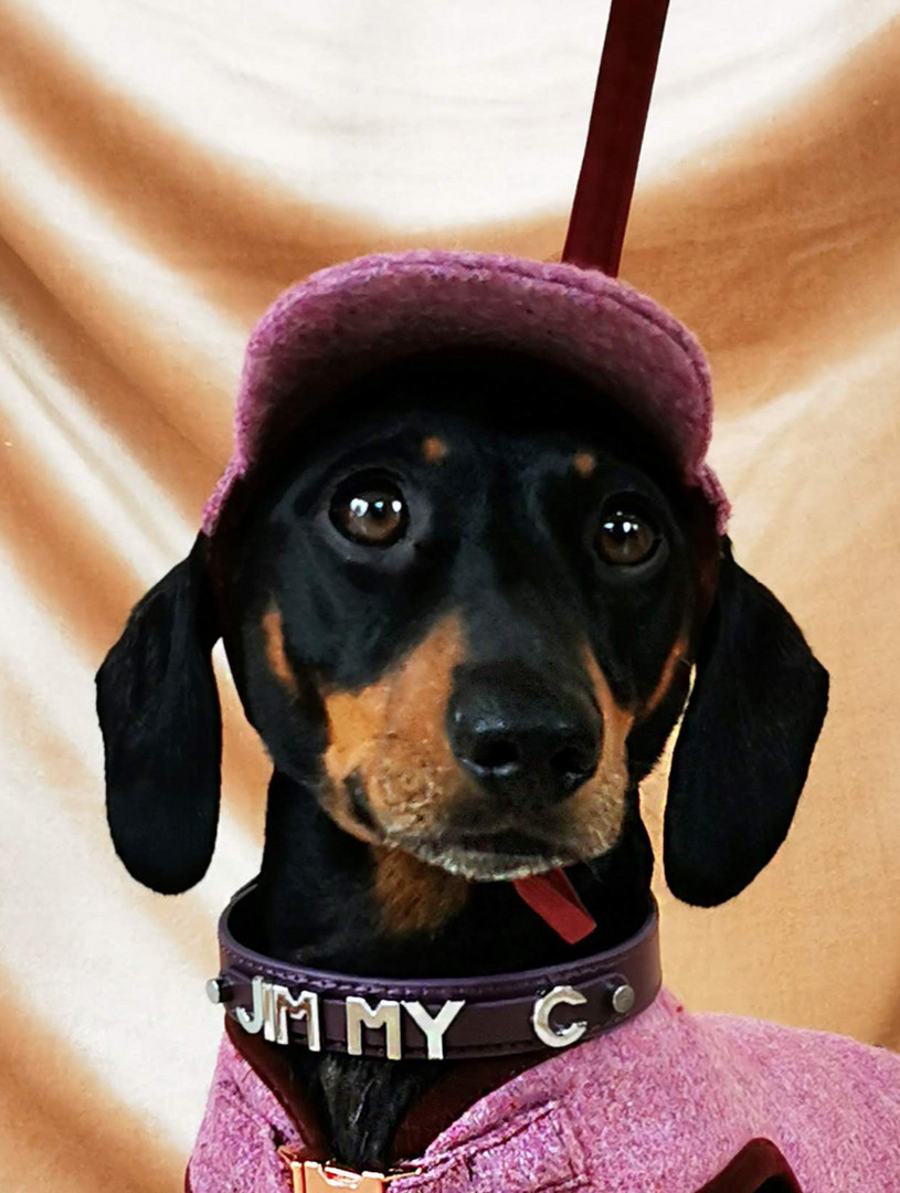 Jimmy Chipolata in tweed hat and jacket