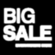 BGBigSale_Logo.png