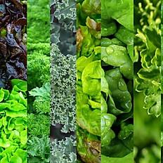 Seasonal Greens