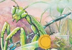 Green-mantis