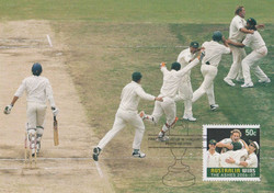 the-last-wicket