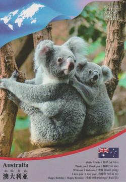 Australia CCUN