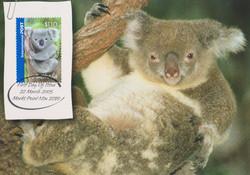 koala 2005march