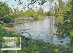 Coburg-peninsula-wetland