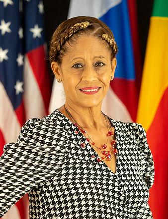 Hon. Irma Delgado Arroyo