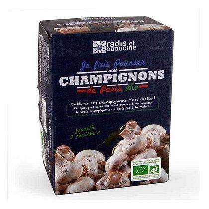 Radis & Capucine - KIT Champignons de Paris BIO (400gr)