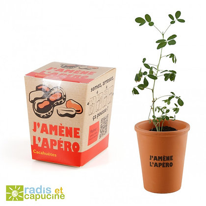 J'amène l'apéro! - Pot de culture avec graines de cacahuètes - Radis & Capucine