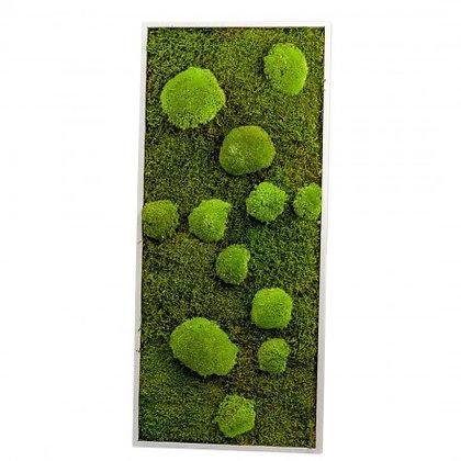 Cadre Végétal Stabilisé - Rectangle L (90 x 40 cm)