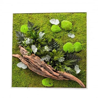 Cadre Végétal Stabilisé - Nature Carré XL (80 x 80 cm)