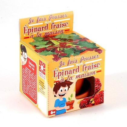 Pour les enfants : Pot 8 cm avec coupelle Épinard-Fraise - Radis & Capucine