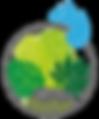 Terrariums_tropicaux_urban_gardener