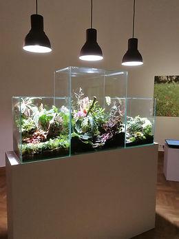 Urban Gardener s'expose à BOZAR