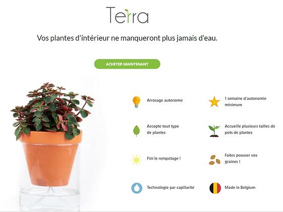 Calla Garden - Terra (Small)