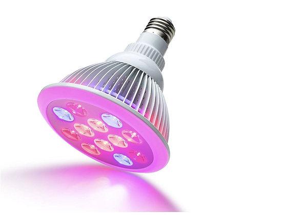 Spot de croissance LED (R/B) - 12 Watts