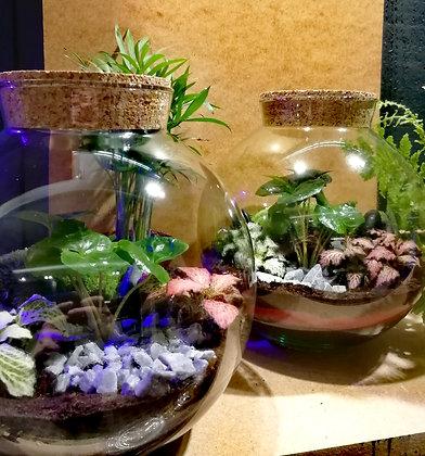 Tropical Garden - éco-collection (24 cm)