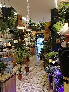 Urban Gardener reste ouvert pendant le reconfinement de novembre