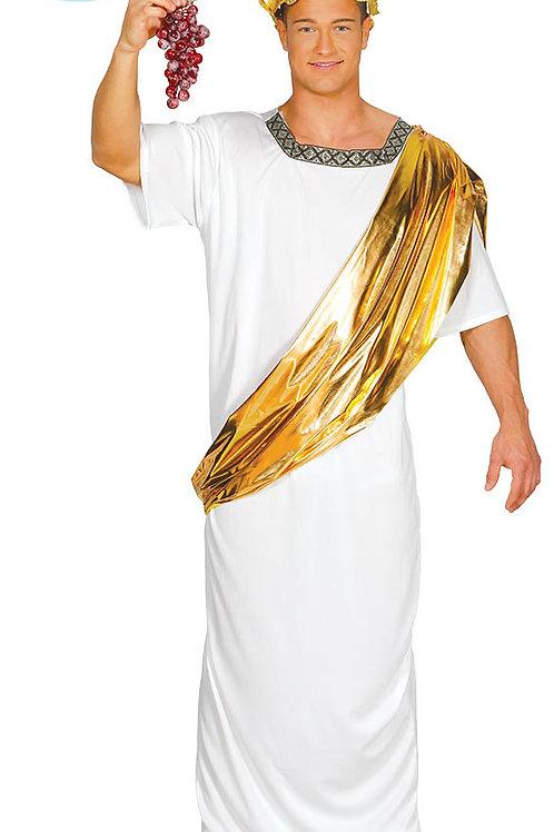 Disfraz Senador