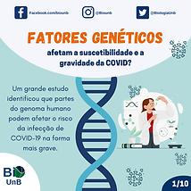 Fatores genéticos afetam a suscetibilidade e a gravidade da COVID.png