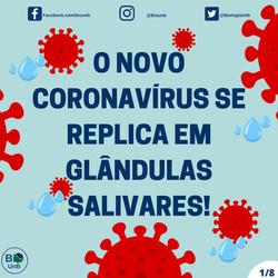 O novo corona vírus capa