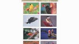 Sticker Sheet Birds North America