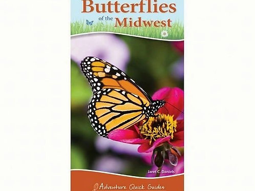 Butterflies of Midwest Quick Guide