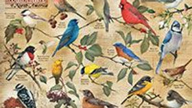 Popular Backyard Birds 1,000 Piece Puzzle