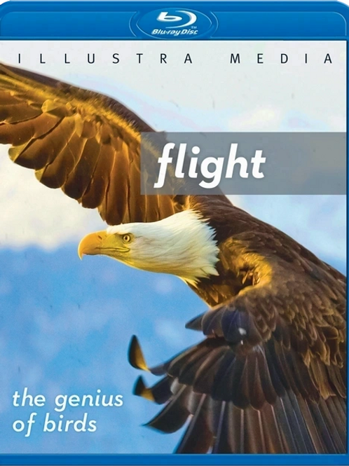 Flight: The Genius of Birds Blu-ray