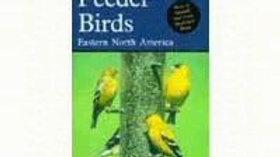 Feeder Birds Eastern (Large)