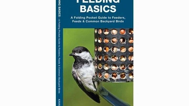 Bird Feeding Basics